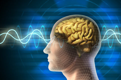 9 Practices That Enhance Brain Function, Memory And Concentration