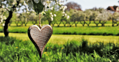 Why You Should Always Trust Your Gut Feeling & Follow Your Heart