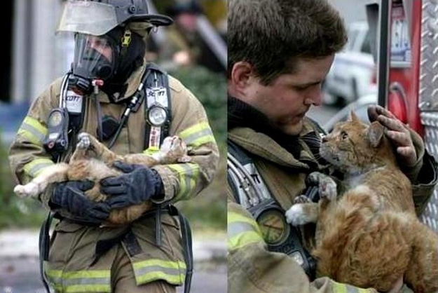 Fire-fighter administers oxygen to a cat rescued from a house fire.